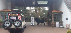 Nairobi National park tours